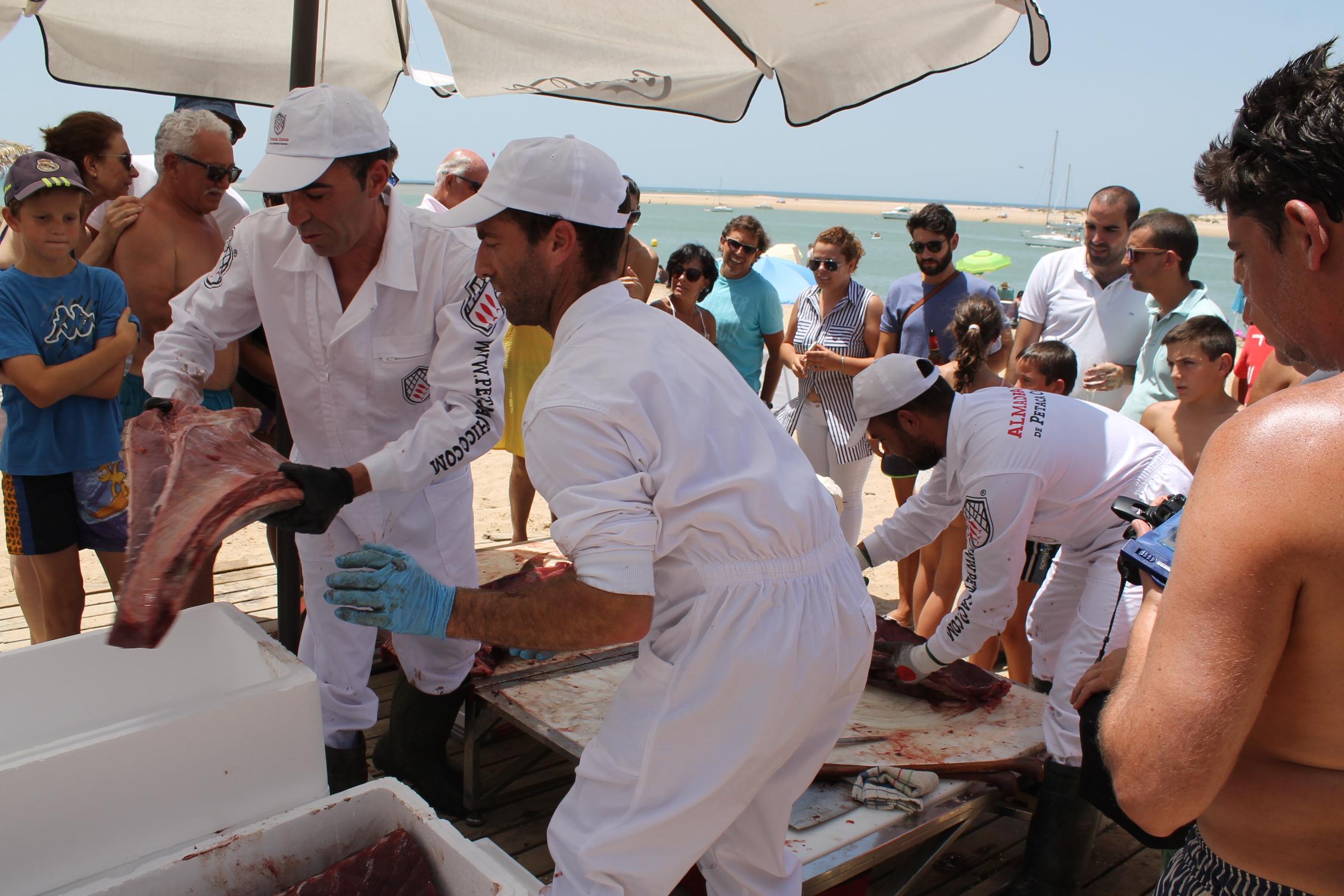 Ronqueo de un atún el pasado verano en Sancti Petri