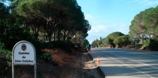 Mejoras de las zonas verdes